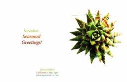 Succulent Seasonal 2 2017