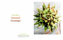 5.5x8.5 seasonalgreetingscard2